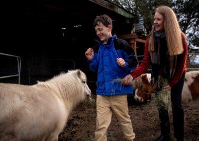 Will feeding a pony