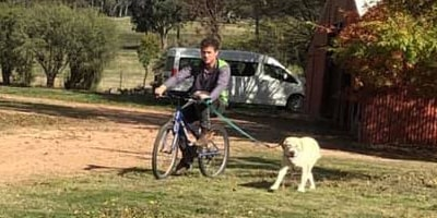 bike riding with a dog
